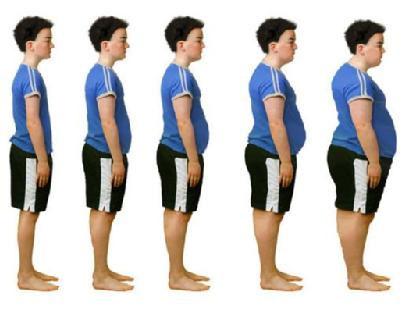 процент жировой клетчатки